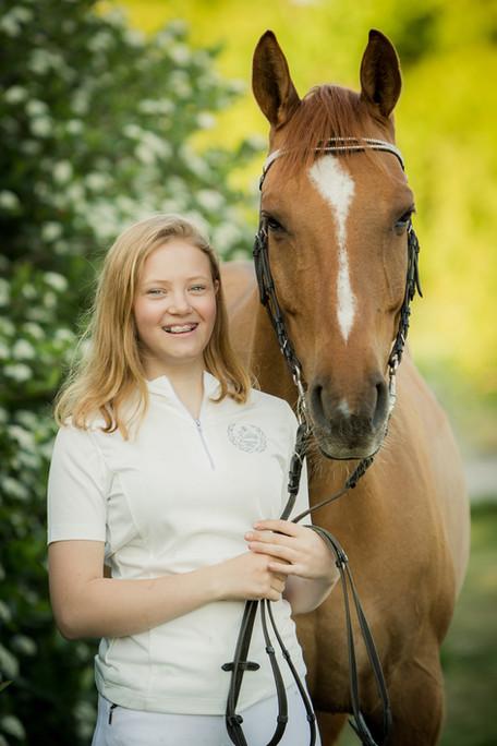 Heste portræt