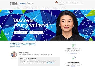 IBM Program