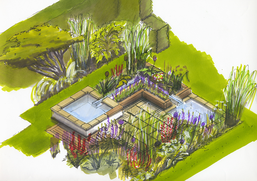Garden illustraion for Kent