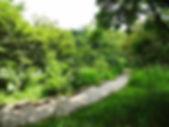 Gravetye Path wild garden.jpg