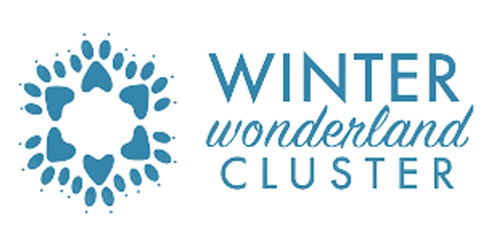 2021 Winter Wonderland Cluster
