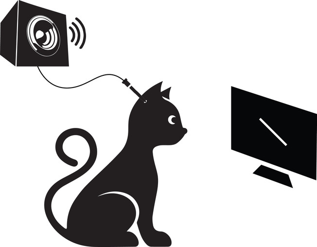 cat-diagram.jpg