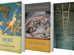 Book Covers & Pagination