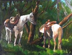 Shady Horses
