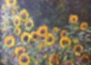 Rt. 74 Sunflowers
