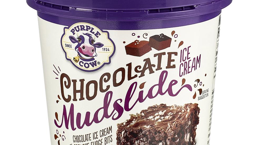 Pint of Chocolate Mudslide Ice Cream