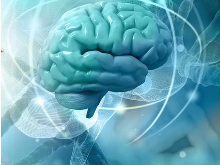 Efectos en el cerebro, con la práctica del Yoga