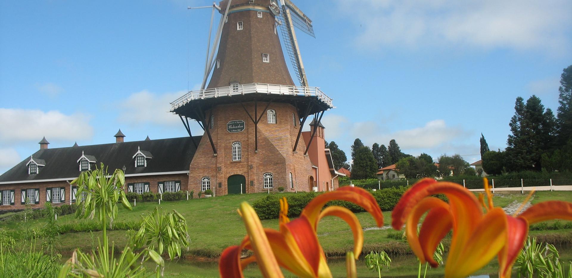 O moinho e as flores - A beleza da Holan