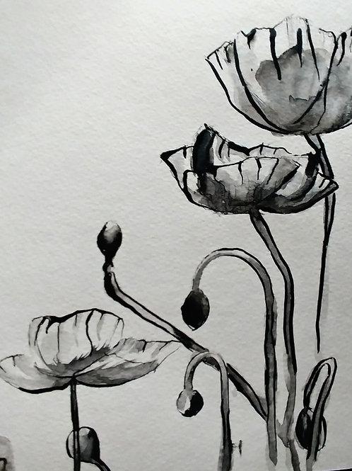 Poppys in Sumi