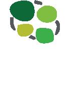Logo Yarey.png