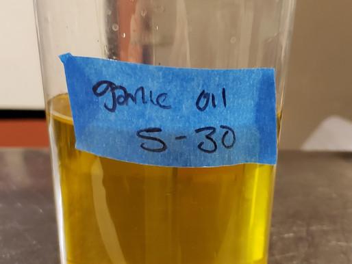 Doing it right. Garlic in oil