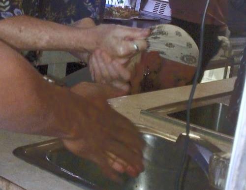 Food Carts : Handwashing Requirements