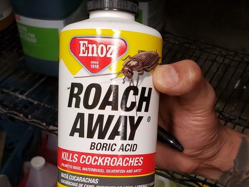 Pest Prevention Program - Boric Acid OK to use?