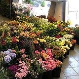 bloemenshop nispen website.jpg