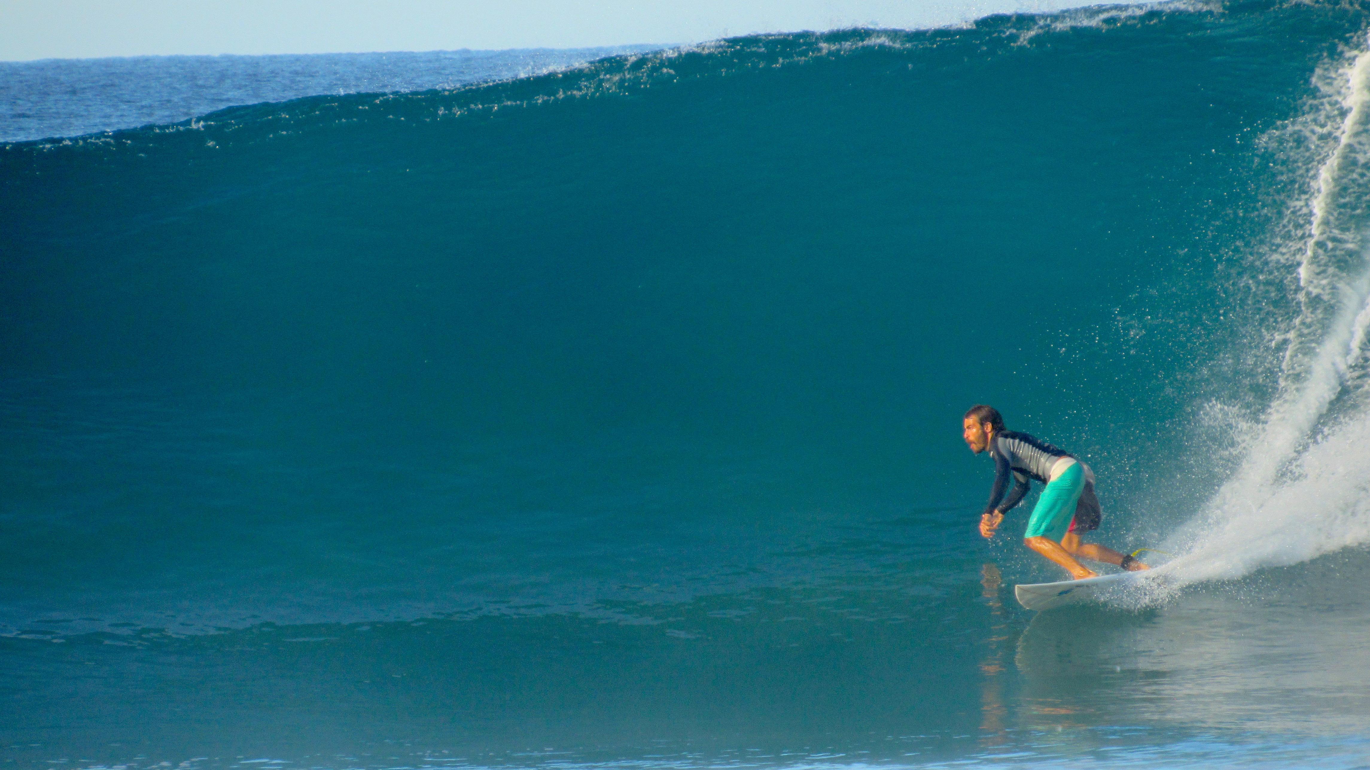 [ SURF ]