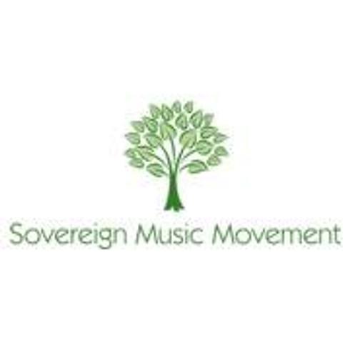 Sovereign Music Movement + Drum & bass improvisation duo