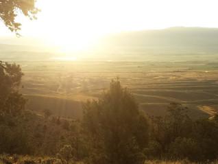 Lone Cedar Canyon Trail Review