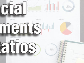 Financial Statements and Ratios