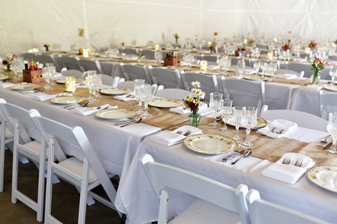 Wedding Reception Chairs & Tables