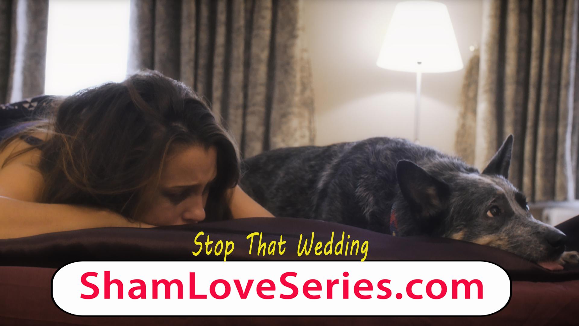 Sham Love Series