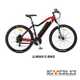 JLW005 E-BIKE-01.jpg