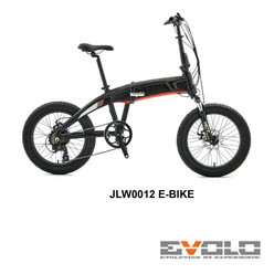 JLW0012 E-BIKE-01.jpg