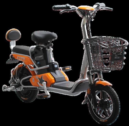 JL E MOTORCYCLE-14inchGL 613 48V.png