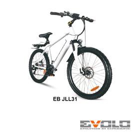 EB JLL31-01.jpg