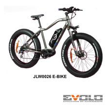JLW0026 E-BIKE-01.jpg