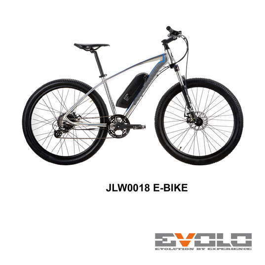JLW0018 E-BIKE-01.jpg