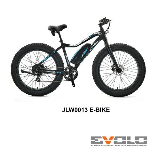 JLW0013 E-BIKE-01.jpg