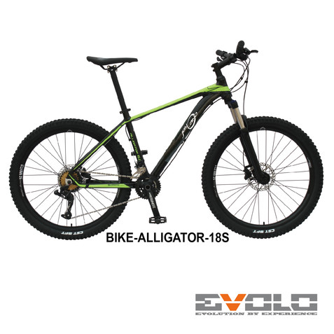 JL-BIKE-ALLIGATOR-18S-01.jpg