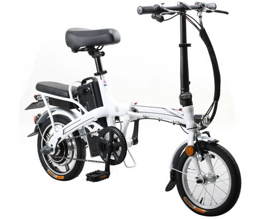 JL E MOTORCYCLE-14inch Colorful 48V.png