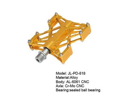 JL-818副本.jpg
