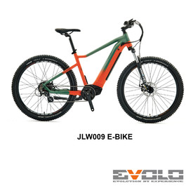 JLW009 E-BIKE-01.jpg