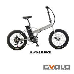 JLW003 E-BIKE-01.jpg