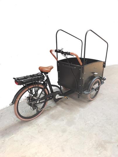 JL cargo E-bike-05-01 (5).jpg