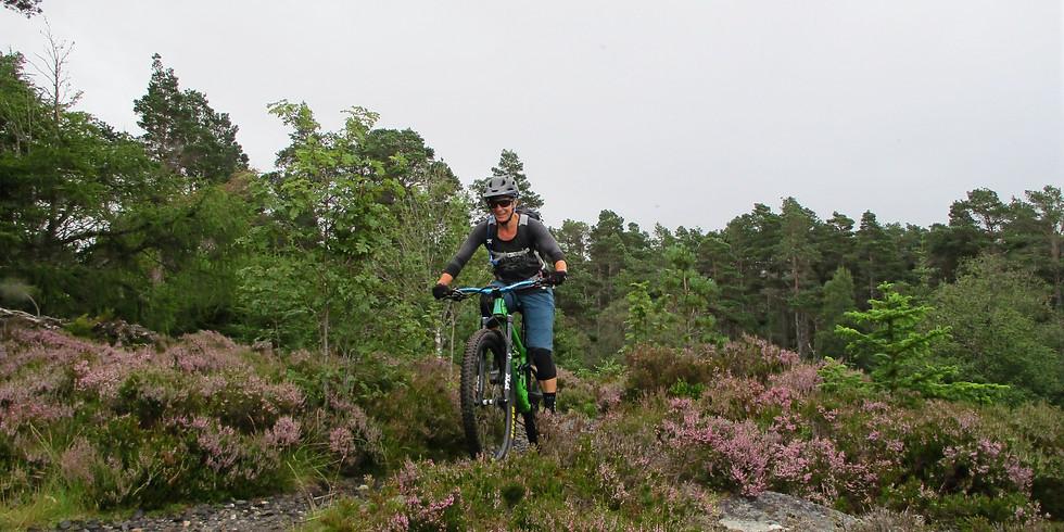 Introduction To Mountain Biking