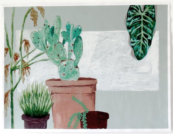 Klinische planten.jpg
