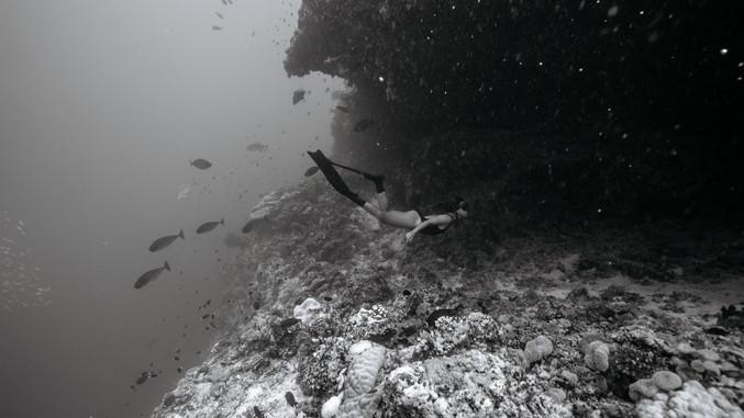 Cave freediving by Matt Porteous