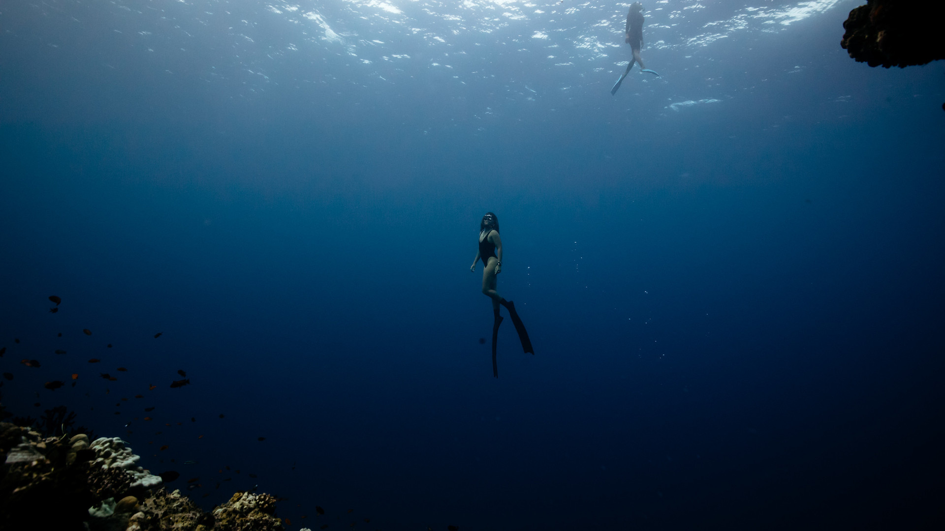 Freediving shoot with Matt Porteous