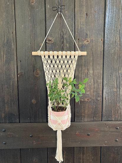 Flat Pocket Plant Hanger- Large