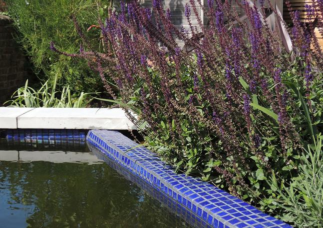 pool detail.jpg