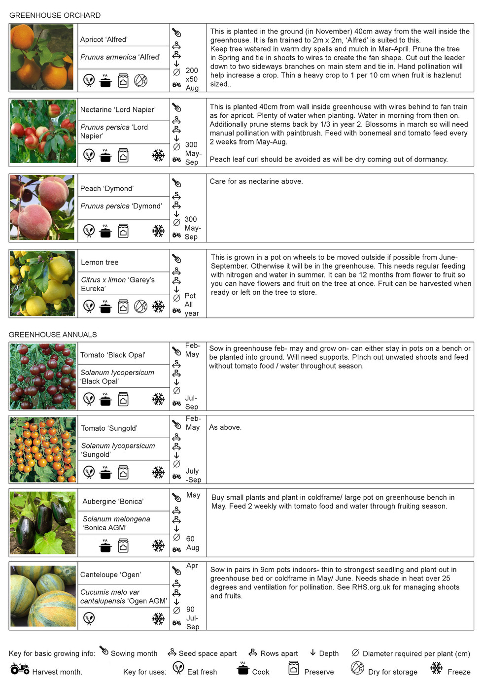 8 herbs annuals.jpg