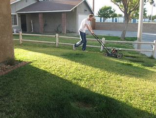 9 Lawn Care Tips Every Homeowner Should Consider During Summer