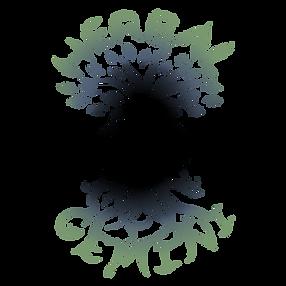 herbal gimini logo.png