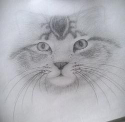 Hand sketched