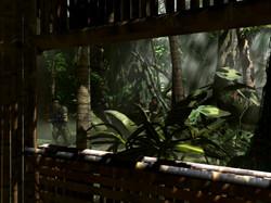 3D Rendered Jungle Mock Up