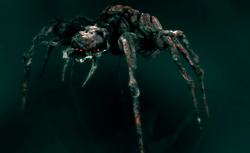Lovecraft Spider_edited
