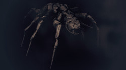 Todash Space Creature